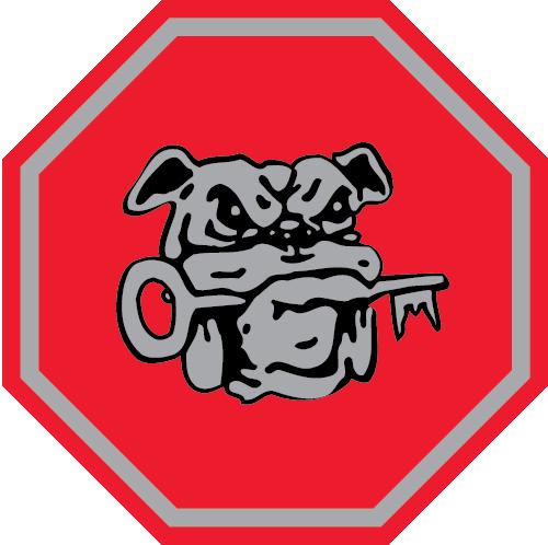 Säkator Logotyp